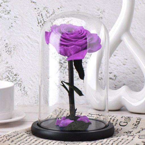 Rose Éternelle Belle Et La Bête Naturelle